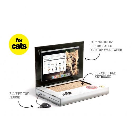 Laptopul pentru pisici!