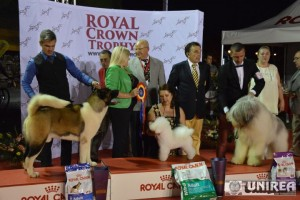 Regal canin in acest week-end, la Alba Iulia