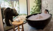 Jamala Wildlife Lodge – experienta inedita!
