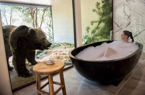 Jamala Wildlife Lodge – experienta inedita!