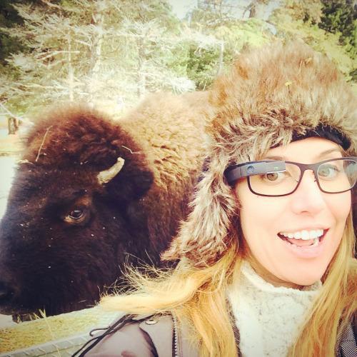 selfie bizon