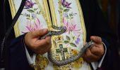 Serpii Maicii Domnului au aparut, din nou, in biserica din Kefallonia