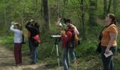 birdwatching 2