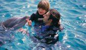 Toate animalele de companie pot influenta, in bine, viata unui copil cu autism