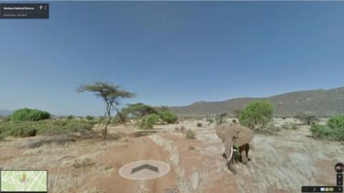 Rezervatia Samburu, pe Google Street View