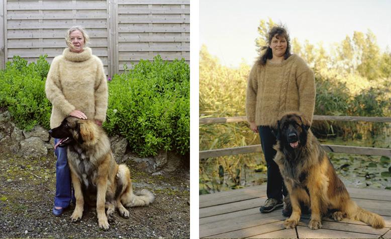 posesoare de pulovere din blana companionilor canini