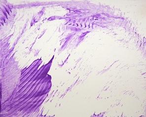 pictura pitonului Ada!