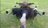 drona 4