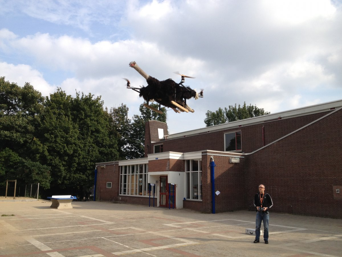 drona strut