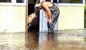 Nu a ezitat nici o secunda: a salvat un caine al carui sfarsit era sigur…