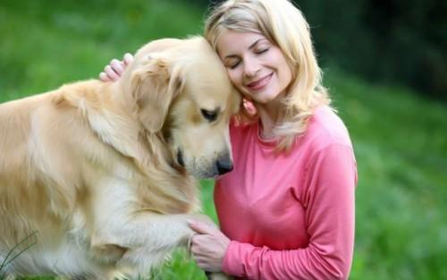 Am aflat care sunt cei mai populari câini în SUA. Te vei ÎNDRĂGOSTI de ei imediat I VIDEO