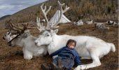 Imagini care iti taie respiratia: Nomazi, alaturi de animale salbatice