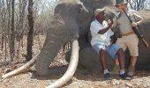 O alta crima revolta lumea iubitorilor de animale: a fost ucis la vanatoare cel mai mare elefant din ultimii 30 de ani!
