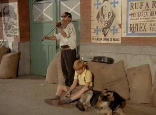 """Animalele, actorii din filme! Calu, cainele """"Pistruiatului"""", era maior de Securitate"""