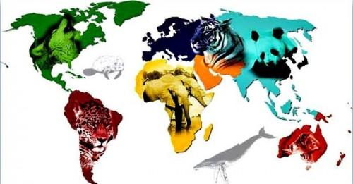 La multi ani, de Ziua Mondiala a Animalelor!