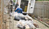 Noi acuze grave legate de padocul primariei din Botosani! De la vanzarea hranei cainilor, pana la eutanasierea acestora pentru vanzarea blanii!!