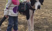 O fetita cu o boala genetica rara, ajutata de caine sa duca o viata cat se poate de normala!