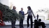 Bo si Sunny, cainii familiei Obama, la primirea bradului oficial de Craciun al Casei Albe