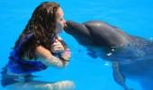 delfin nas