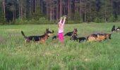 Un minut de FERICIRE PURA! O fetita de 5 ani si joaca ei alaturi de 14 ciobanesti germani