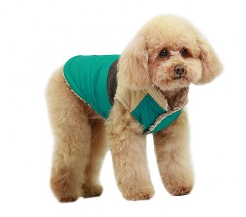 Te pricepi sa-i confectionezi o hainuta pentru vremuri friguroase? Noi iti oferim un tipar!