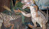 Geoparcul Dinozaurilor Tara Hategului, recunoscut ca sit UNESCO