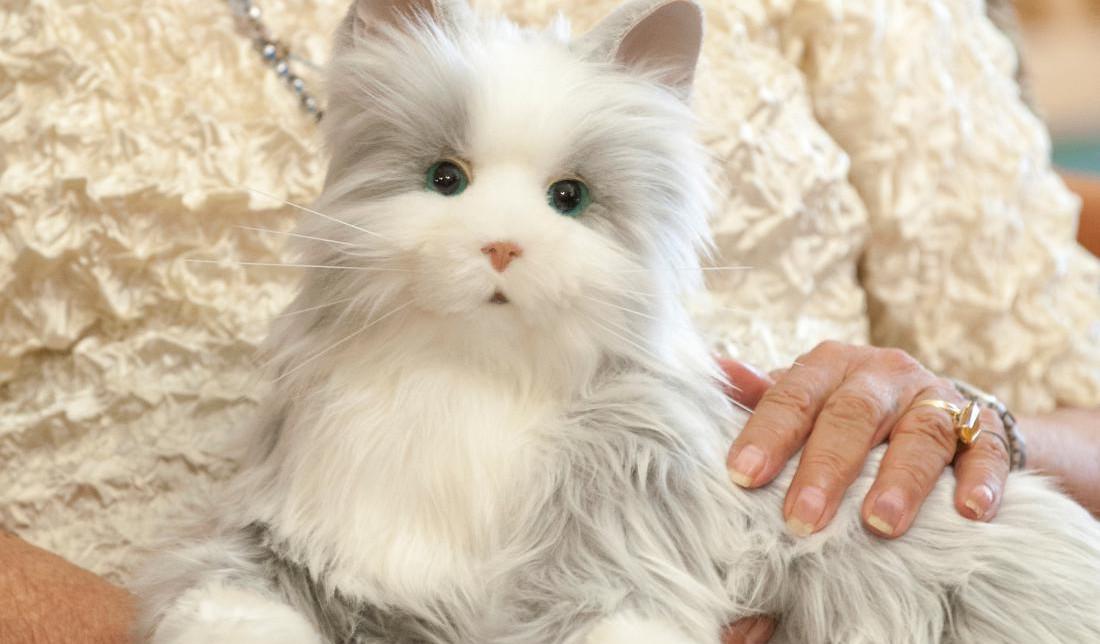 Hasbro JOY FOR ALL Companion Pet cat