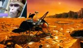 Rusia antreneaza macaci pentru a-i trimite pe Marte!