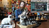 Luke Daniels the landlord of the Bag Oí Nails Pub in Bristol which has 15 resident cats. See SWNS story SWCAT; London has its cat cafes, but Bristol has gone one better: a cat pub. A pub in the centre of Bristol will have cat lovers purring with delight when they walk through its modest little door. Bag o' Nails in St George's Road is the talk of the town at the moment and not because of its eclectic selection of fine beers. Sitting at the bar while cute kittens and fat cats step over your pint is all part of the experience ñ and people like it. The landlord of Bag o' Nails has 15 cats and they can all join you for a friendly tipple or two.