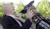 Terapia cu caini, salvarea veteranilor cu sindrom de stres posttraumatic