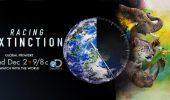 """Discovery a lansat campania """"Racing Extinction"""", o miscare globala pentru conservarea speciilor"""