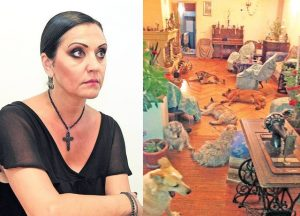 Beatrice Rancea are acasa 17 caini