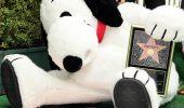 "Snoopy si steaua lui pe ""Walk of Fame"""