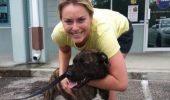 O schioara celebra a ajuns pe masa de operatie, dupa ce a fost muscata de cainii ei