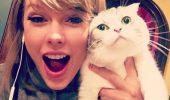 Taylor Swift si Meredith Grey2