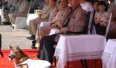 Tongdaeng alaturi de stapanul sau, regele Bhumibol Adulyadej al Thailandei