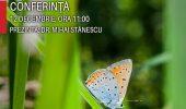 Fluturi de interes comunitar in pajistile din Romania