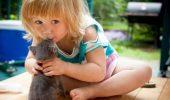 Dupa ce vei vedea aceste fotografii, sigur vei dori si tu un animalut pentru copilul tau!
