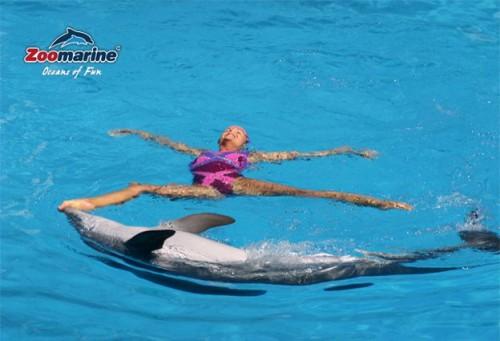 delfin2