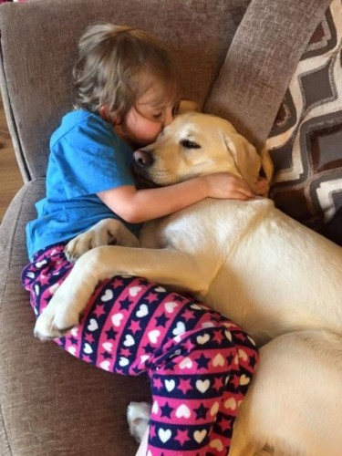 Un caine uimitor, care a salvat viata unei fetite!