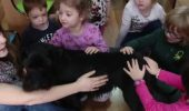 O gradinita din Cluj are, printre cursurile optionale, activitati asistate de animale!