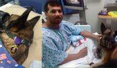 CAMARADERIE! Un militar si cainele sau sunt de nedespartit dupa ce au fost raniti in acelasi atac, in Afganistan