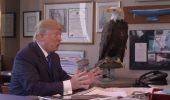 Donald Trump, atacat de un vultur in timpul unei sedinte foto – VIDEO