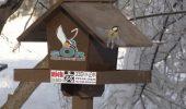 Proiect SOR: Hranitori pentru pasari in marile parcuri bucurestene