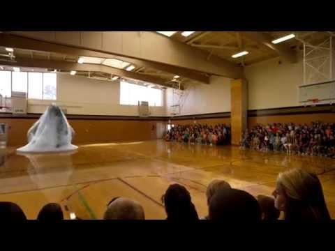 """O balena """"saltareata"""" print-o sala de sport!"""