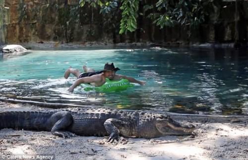 A inotat pe langa crocodilii de 8 metri! Ce truc a folosit?