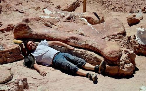 Oare a fost gasit cel mai mare animal care a trait vreodata pe Pamant?