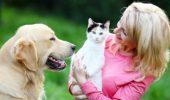 BENEFICIILE aduse SANATATII UMANE de catre animalele de companie