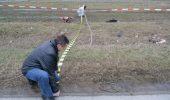 O ancheta grea: CAINII UCIGASI de la Albina! Doi oameni au murit sfasiati de bestiile salbaticite, langa Drumul European 584