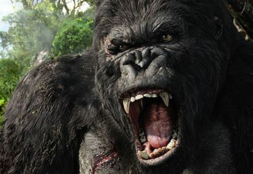 King Kong a disparut de pe Pamant din cauza incapacitatii de a se adapta schimbarilor climatice